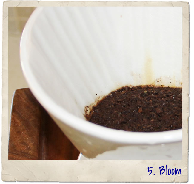 coffee pourover method